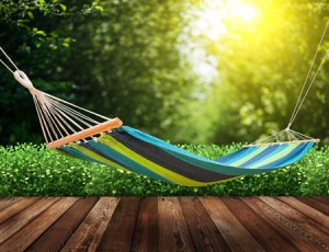 Hammock - perfect place to do nothing