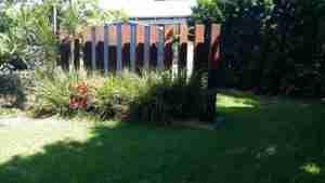 Walking mindfulness mediation in my back garden