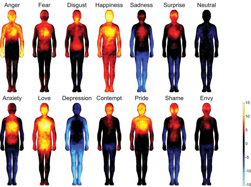 Image showing where emotions are located in the body - results of research from Aalto University in Finland